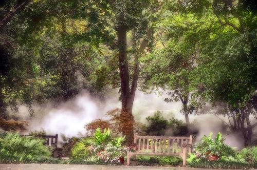 dallas-arboretum-and-botanical-gardens