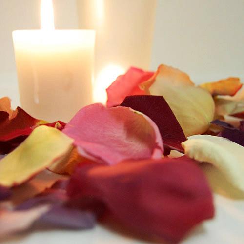 freeze-dried-rose-petals-500