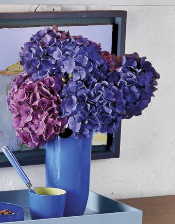 Blue-Hydrangeas-In-Blue-Vase-GTL0107-de