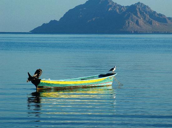boat-at-anchor-in-ensenada
