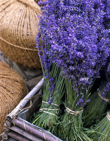 lavender-box by country living