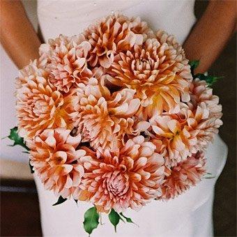 Choosing Flowers In Season     The Yes Girls
