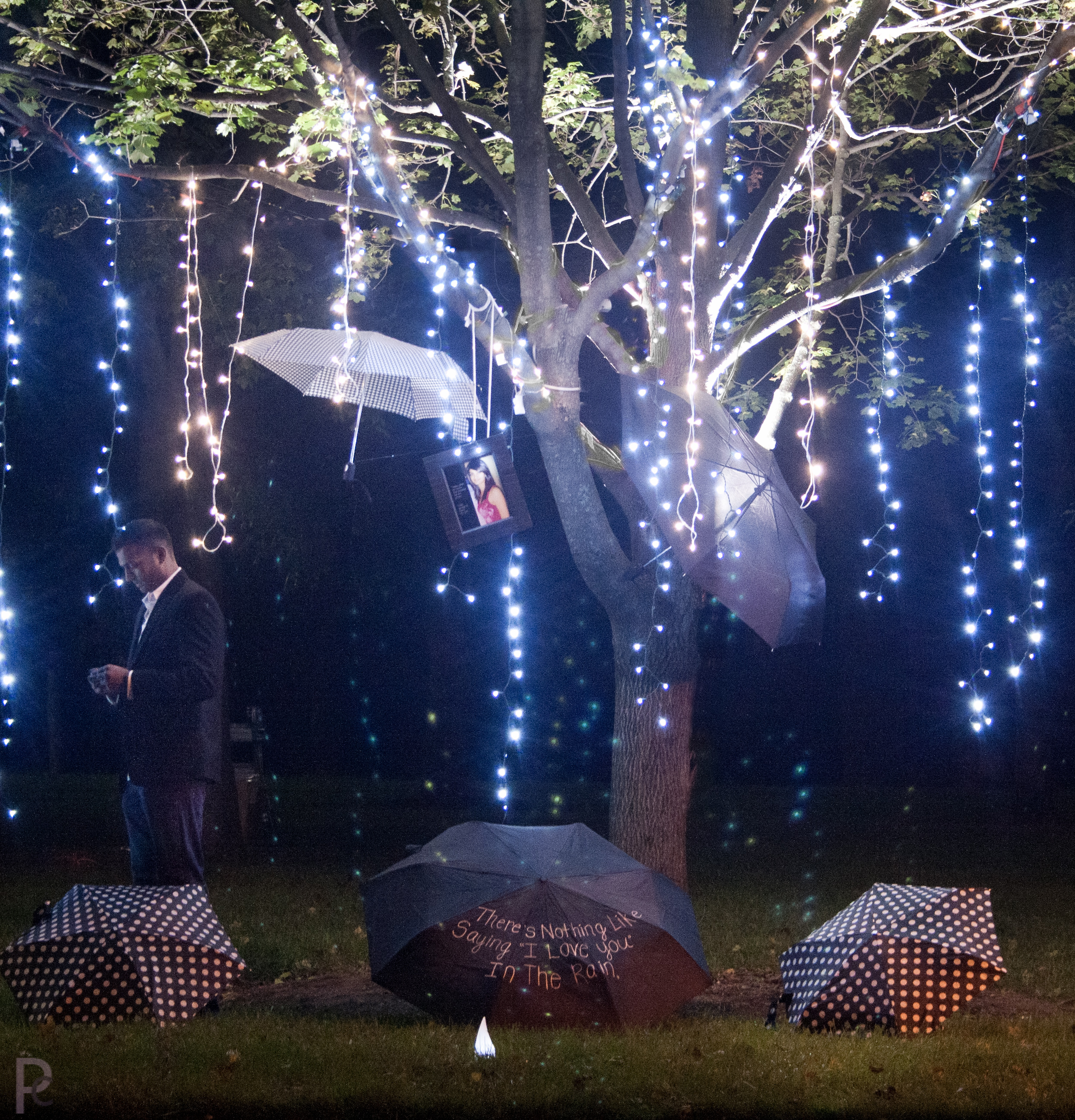 Hello Fall Marriage Proposal In Lights Inspiration