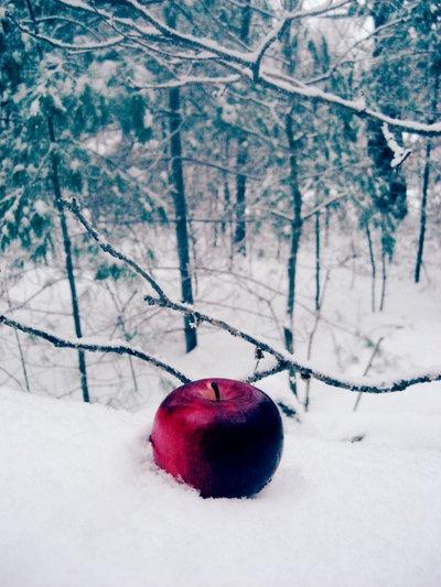 red apple, snow white